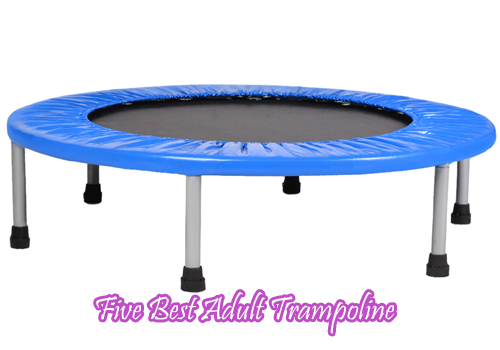 Five Best Adult Trampoline