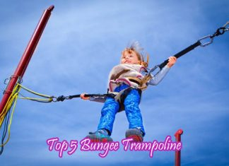 Top 5 Bungee Trampoline